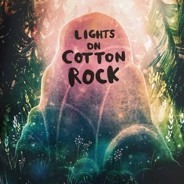 Book Review: The Lights on Cotton Rock by David Litchfield